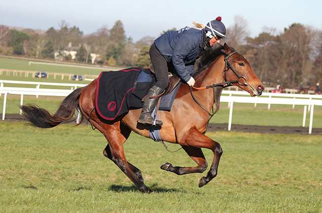 Magical Dreamer - Fred Archer Racing