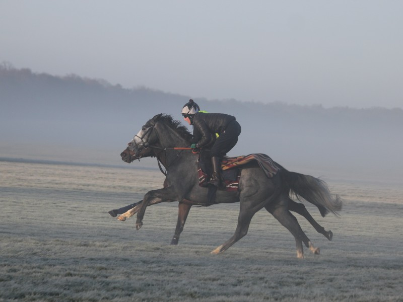 Lord George - Fred Archer Racing